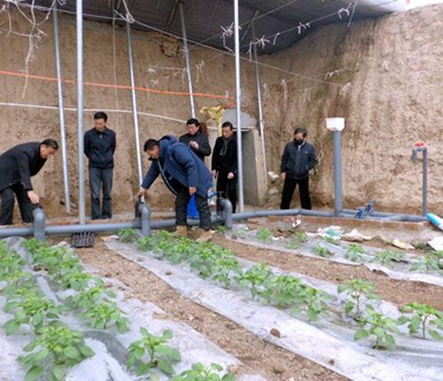 现代农业灌溉工程